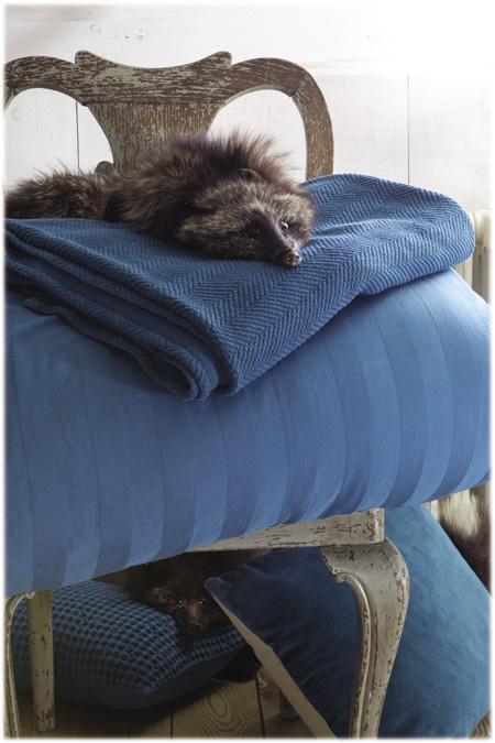 Fotografia con marmota sobre plaid boris