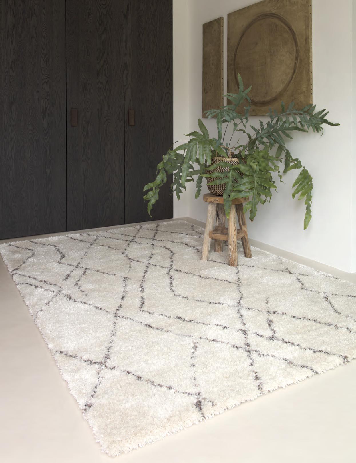 Entrada con alfombra Osta Lana 0372.106