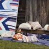 Ambiente con cojín Boki de Kas Australia